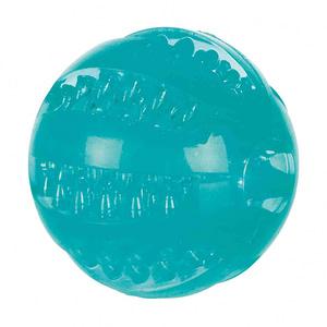 Balls, Frisbees & Dummies
